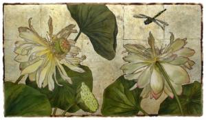 Water Lily Garden #1