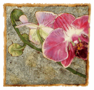 Orchid Series #12
