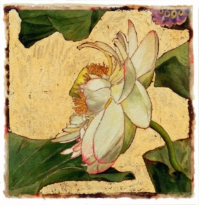 Water Lily Series #13